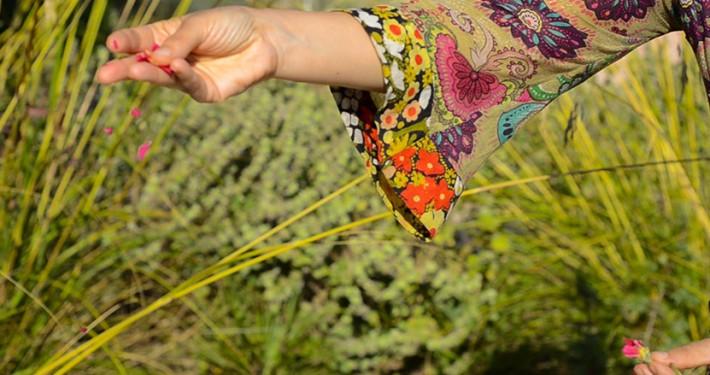 plantes_aromatiques